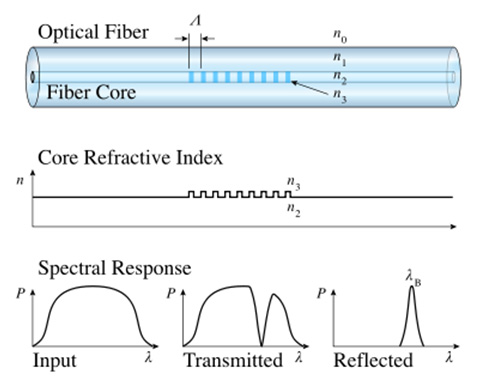 optical fiber in line polarizer
